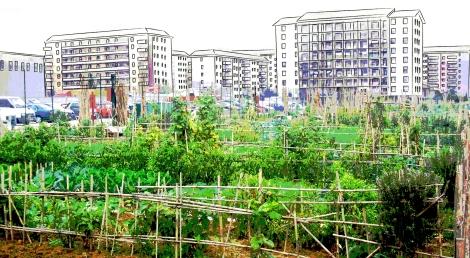 cover co gardens