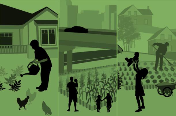 Illustrazione di Seeding the City, NPlan Changelab Solutions.