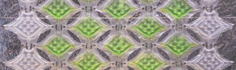 algal design griffa bio onoff