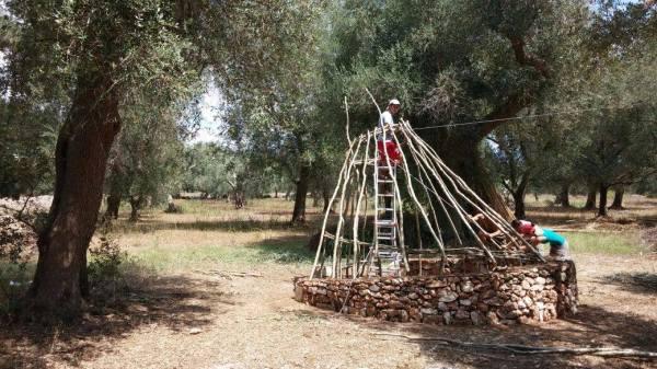 osservatorio dei sogni paduli 2015 bio onoff