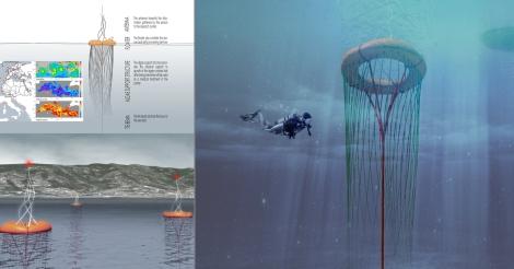 10 maree-sonde